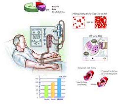 Chế độ ăn cho bệnh nhân suy thận mạn có lọc máu ngoài thận có chu kỳ
